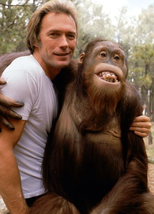 Clint Eastwood and Manis the orangutan in the role of Clyde on the set of the 1978 film Every Which Way But Loose