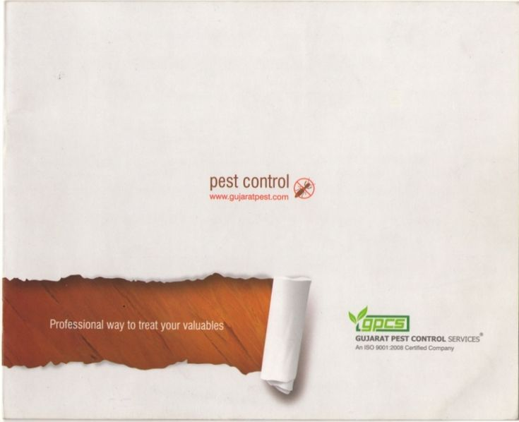 Gujarat pest-control by gujaratpest via slideshare
