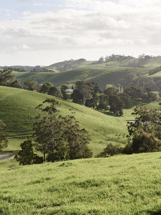 beautiful Australian hills