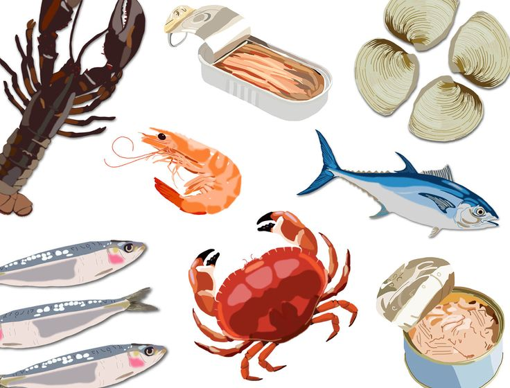 Fish is a protein we can feel great about—unless we're contributing to the extinction of a species or poisoning ourselves with mercury. But amazing resources make it possible to consume fish happily and ethically; we've …