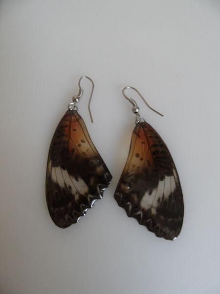 Oorbellen vlinder.