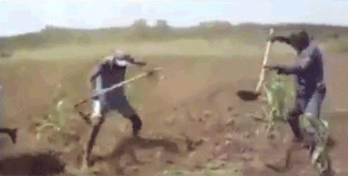 African-Farmer-01.gif
