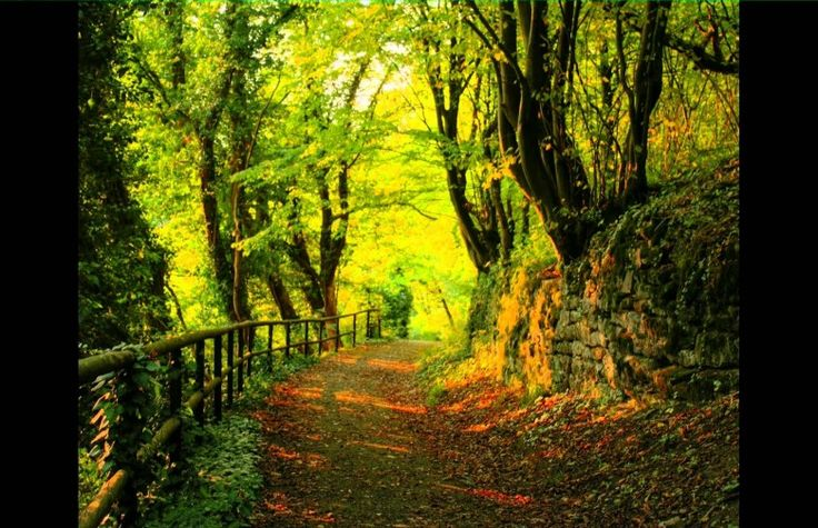 oaza mea de liniste in natura