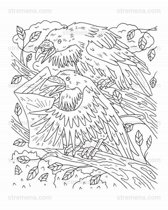 Bird Coloring Pages for Kids - | 713x570