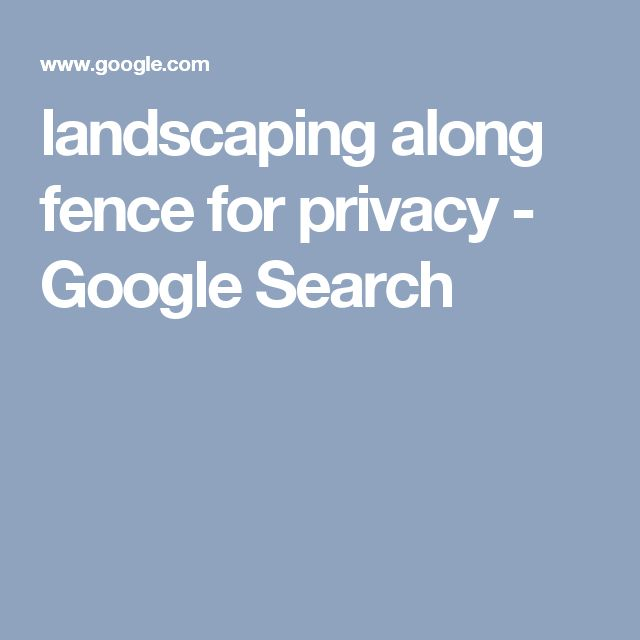 landscaping along fence for privacy - Google Search