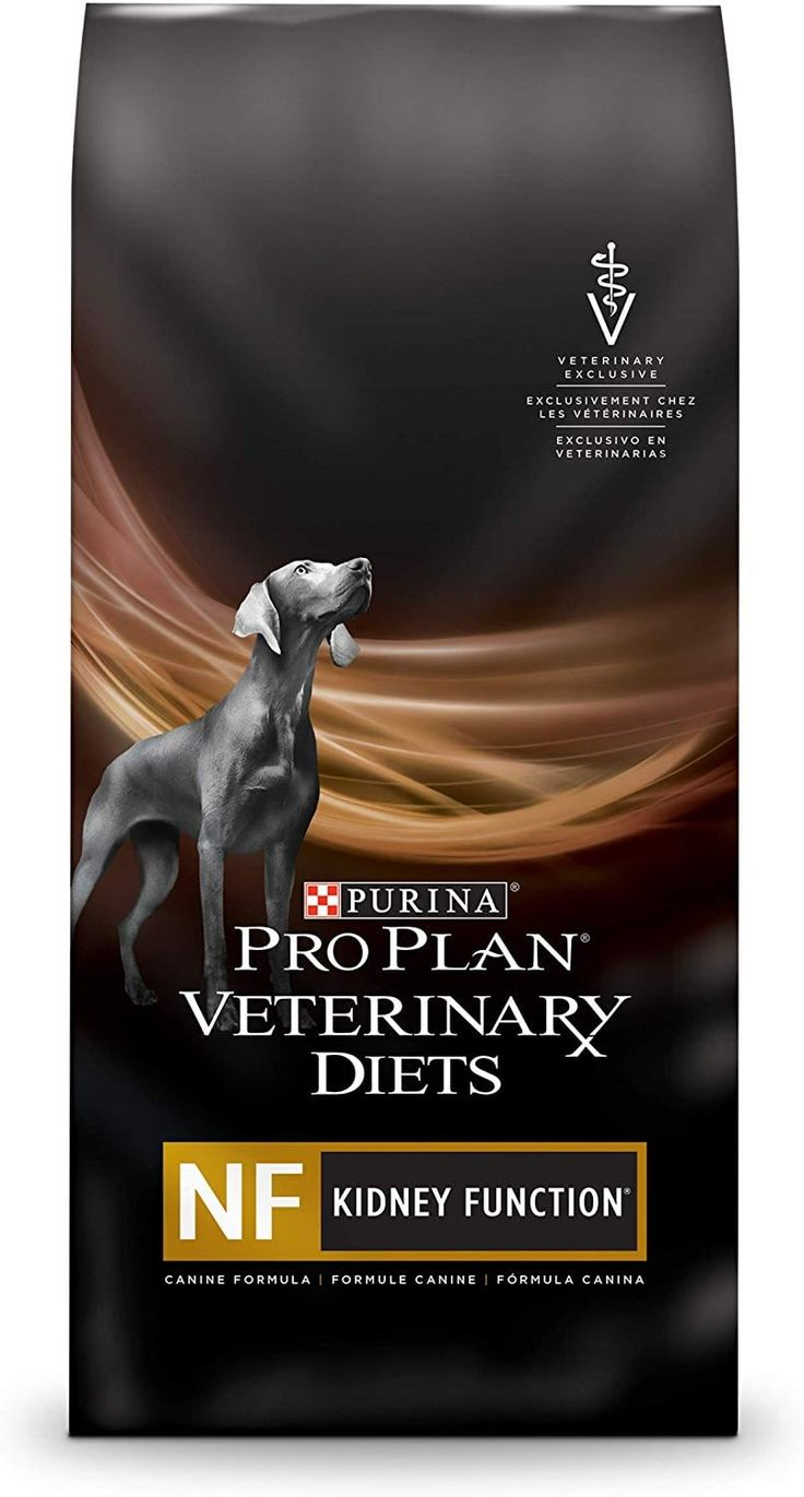 5 low phosphorus foods for dogs with kidney failure in
