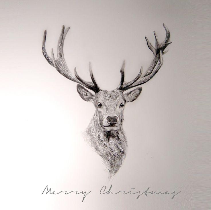 Reindeer Graphite in Strathmore Bristol Paper. #reindeer # ...