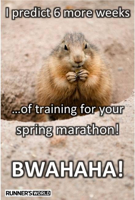 6 more weeks ... of training for your spring marathon!