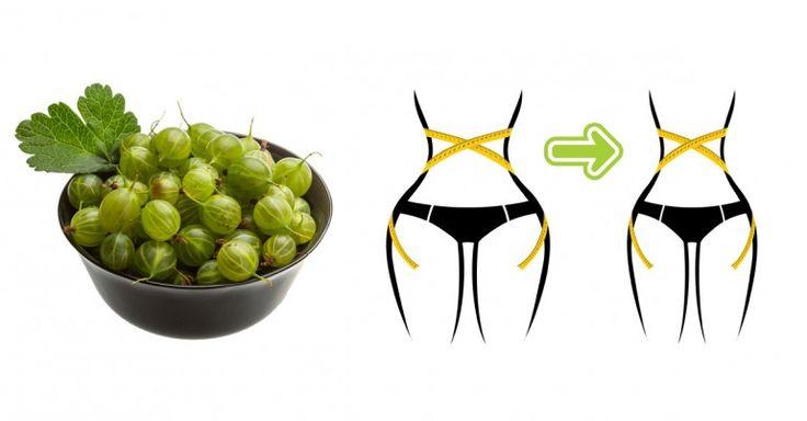 """Esta fruta rica en vitamina C, es capaz de activar la pérdida de peso mediante el aceleramiento del metabolismo. LEER MÁS: Remedio natural para limpiar y proteger la tiroides Su nombre es """"amla"""" o """"grosella espinosa"""", contiene propiedades anti-bacterianas, anti-virales y…"""