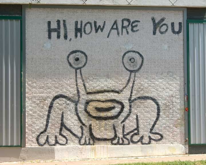 130 best cities austin images on pinterest austin tx for Austin frog mural