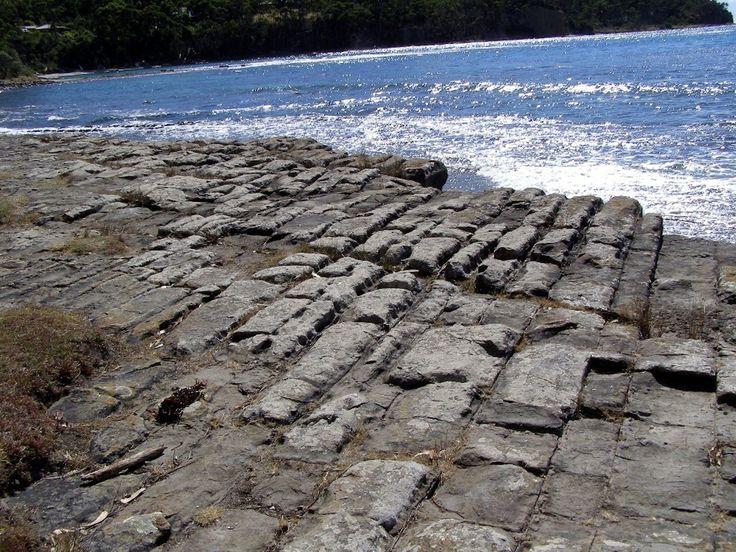 Tessalated rock, Tasmania [rps]