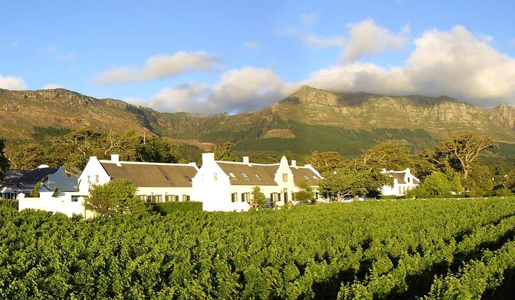Steenberg in Constantia: wine estate, golf course, hotel and restaurants: Bistro 1682 and Catharina's