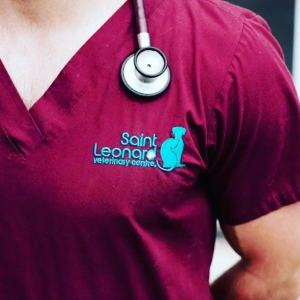 Did you know that Saint Leonard #VeterinaryCentre has been established for over 70 years (previously known as Marshall & Till). How long have you been bringing your #pet past and present to us?  #vet #vets #Derby #pets #VeterinarySurgeon #Veterinary #Derby #instavet #vetlife #veterinarian #petstagram #petsofinstagram #pets_of_instagram #animals #animalsofinstagram #instaanimal #instapet