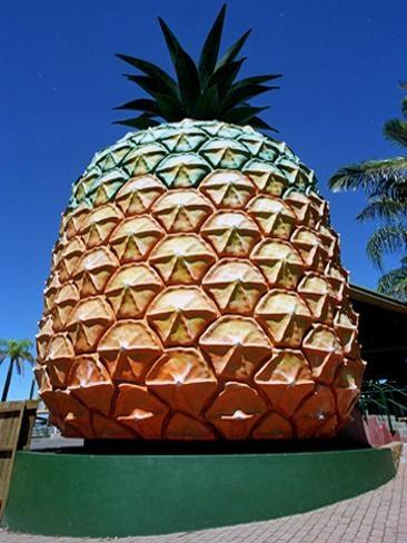 Big Pineapple | Big Aussie things | News.com.au