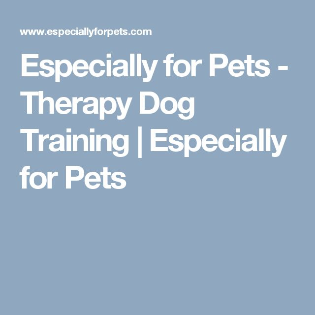 Especially for Pets - Therapy Dog Training | Especially for Pets