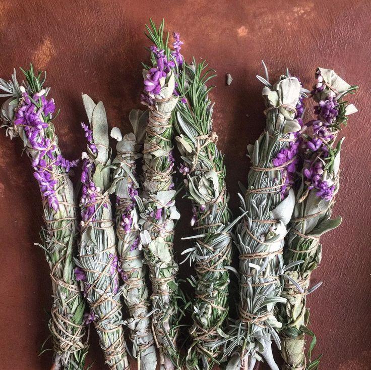 Herbal classes online herbal medicine making course