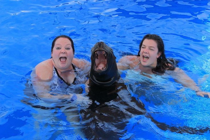 Last but not least, we got to swim with this beautiful sea lion. She was soo funny!