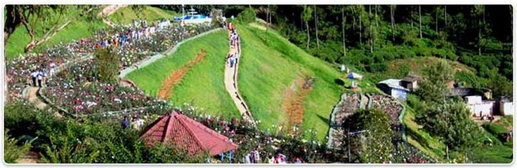 South India Holidays, South India Tourism, Package tour Bangalore Mysore Ooty, South India Honeymoon Packages, Bangalore, Mysore, Kodaikanal Holidays,  Bangalore Holiday Tour, Mysore Holiday Tour.  http://www.vikrantholidays.com/south-india.html