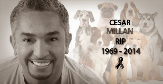"""Cesar Millan, the renowned dog trainer and host of the show """"Dog Whisperer"""" died this morning according to a Spanish news agency. The cause of death is a heart attack. """"A few hours ago, the wife of Cesar Millan, Jahira But announced in a press conference that her husband, Cesar Millan, died of a heart attack in Santa Clarita California hospital where he was hospitalized for some time. (…) Cesar's family said he will be buried in Sinaloa, along with his grandfather,from which he inherited the…"""