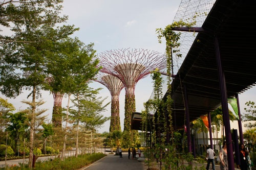 Official opening of Gardens by the Bay