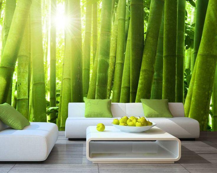 Fototapeta Słońce przebijające się przez bambusowy las