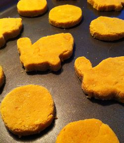 Homemade grain-free sweet potato dog cookie recipe -  made with cocunut flour, but you can substitute any flour you like