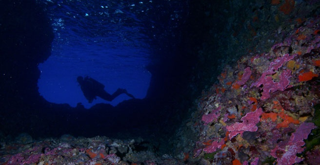 Easy, nice and not so bad diving in Europe, in Chania!