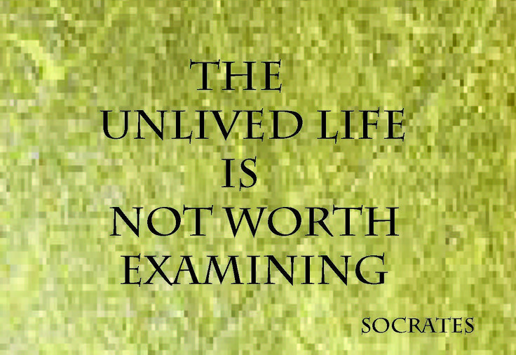 The Socratic Method uses questions to examine the values, principles, and beliefs of an individual. It is not about reciting facts, or questioning the logic of abstractions. Socratic inquiry's purpose is to uncover the motivation and assumptions on which one leads their life. ozzie@mindfulness.com