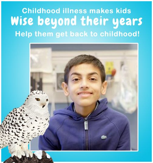 Week two of our May campaign to help Sick Kids. 10% of all Schleich sales in may will be donated.