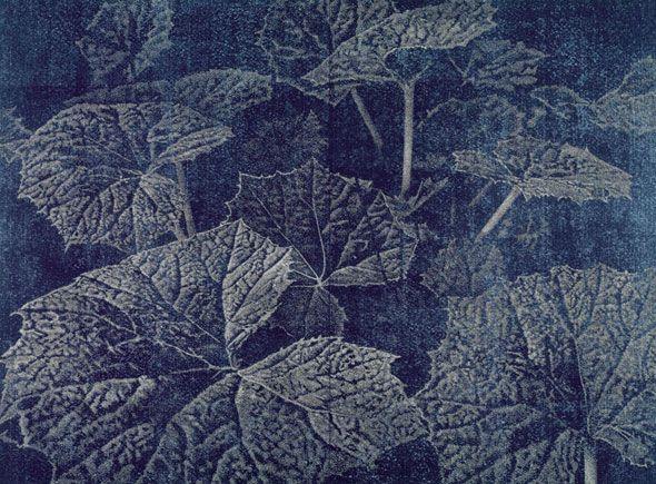 Franz Gertsch - Woodcut