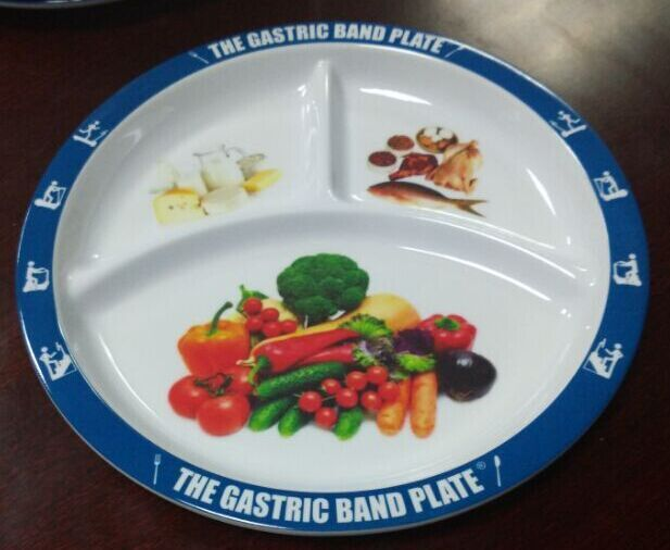 25 Best Portion Control Plate Ideas On Pinterest Food