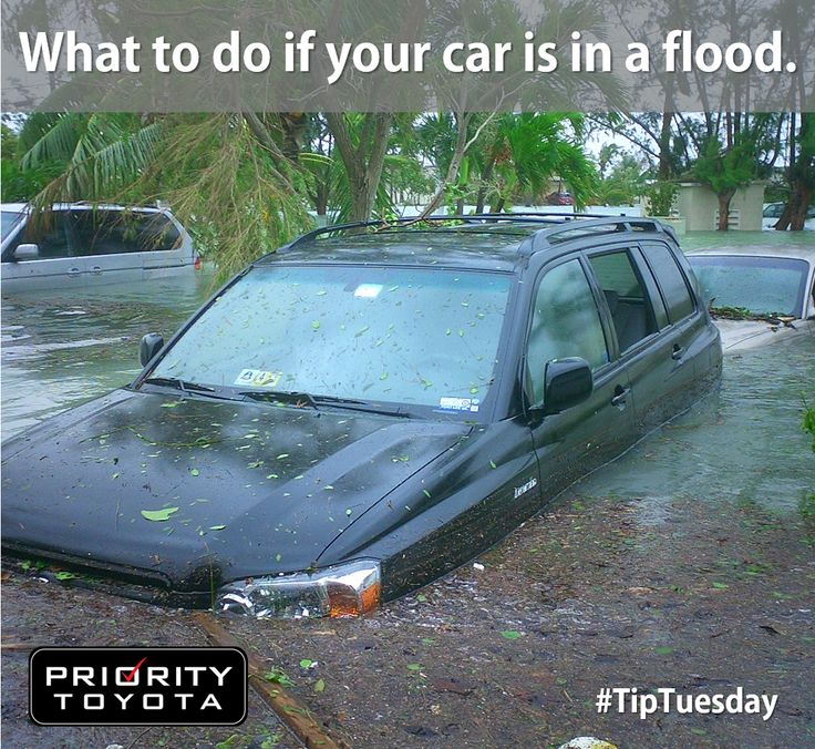 Many of us in Hampton Roads have been impacted by Hurricane Matthew and don't know the next steps, particularly when it comes to vehicles that have experienced flooding. Check out this great About.com article on what to do if your car has flood damage. This are very important tips to avoid further damage to your vehicle. #TipTuesday #CleanUp #FloodDamage #cartips #protips #HRVA #toyota