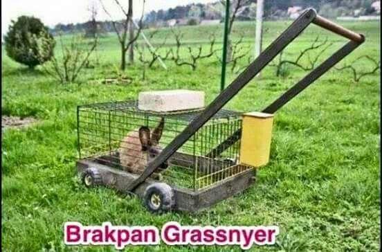 Die brakpan grassnyer, nou beskikbaar in julle naaste petshop.  #joke #grap…