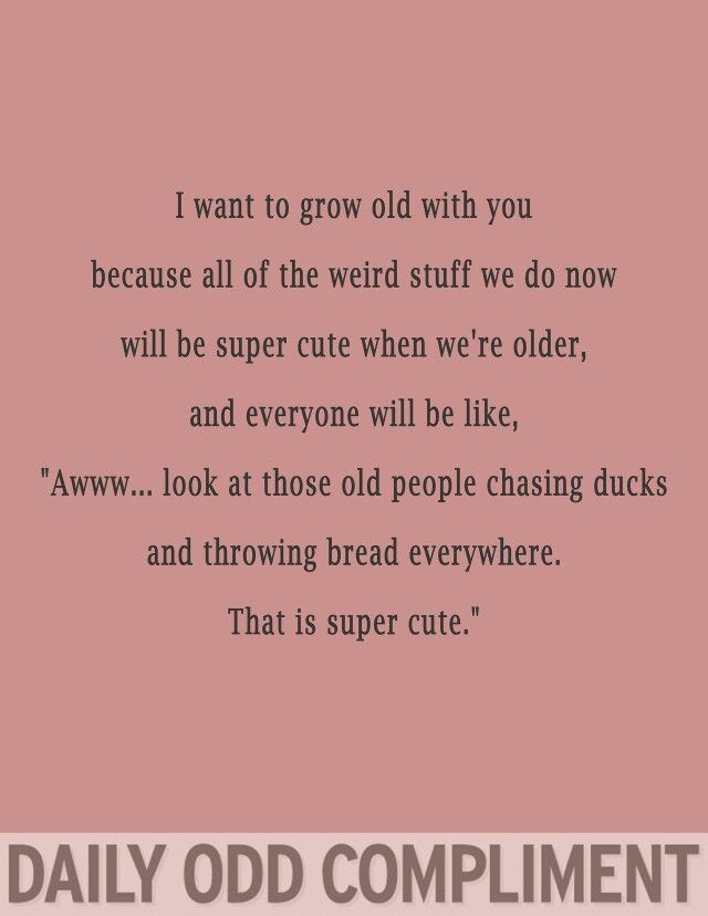 I want to grow old with you... chasing ducks and throwing bread everywhere. Daily odd compliment