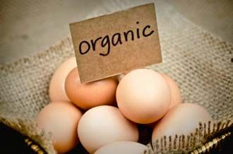 Debunk the eggs-aggerated health myth. Egg consumption has no effect on total cholesterol or LDL.
