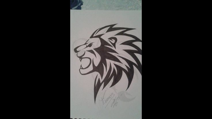 How To Draw A Lion Tattoo طريقة رسم اسد وشم Youtube Lion Tattoo Drawings Art
