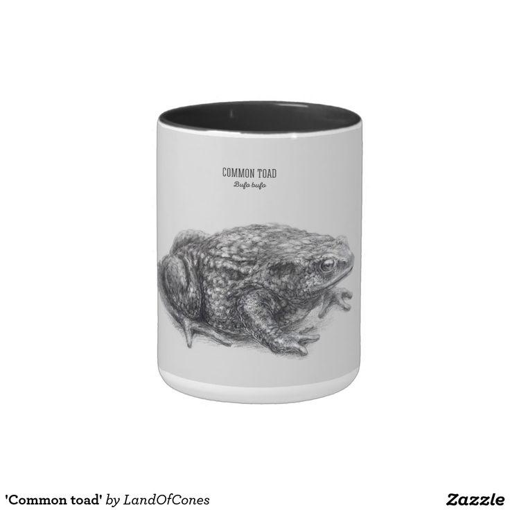 'Common toad' Two-Tone Coffee Mug