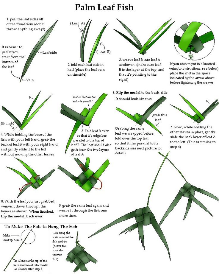 palm frond art how to do it | Palm Leaf Logo