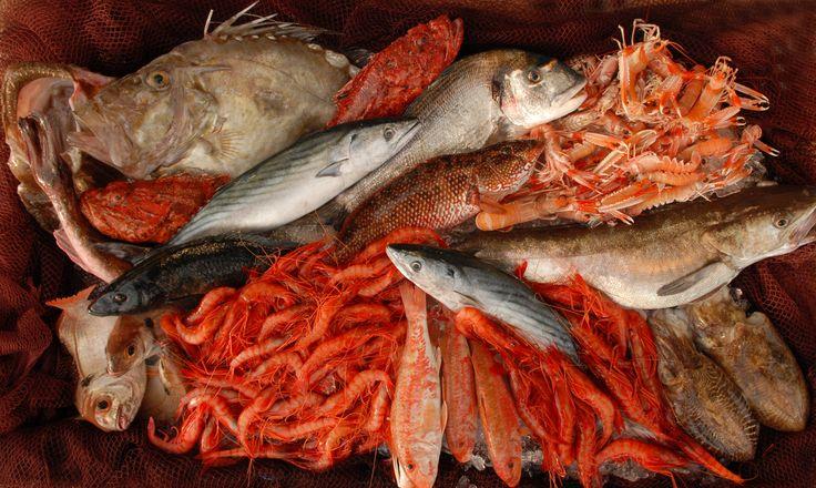 Disfruta de los auténticos pescados y mariscos del Mediterráneo. Nuestra denominación de origen es sinónimo de la máxima calidad. Sano, nutritivo y delicioso. ¿A qué esperáis para disfrutarlo?