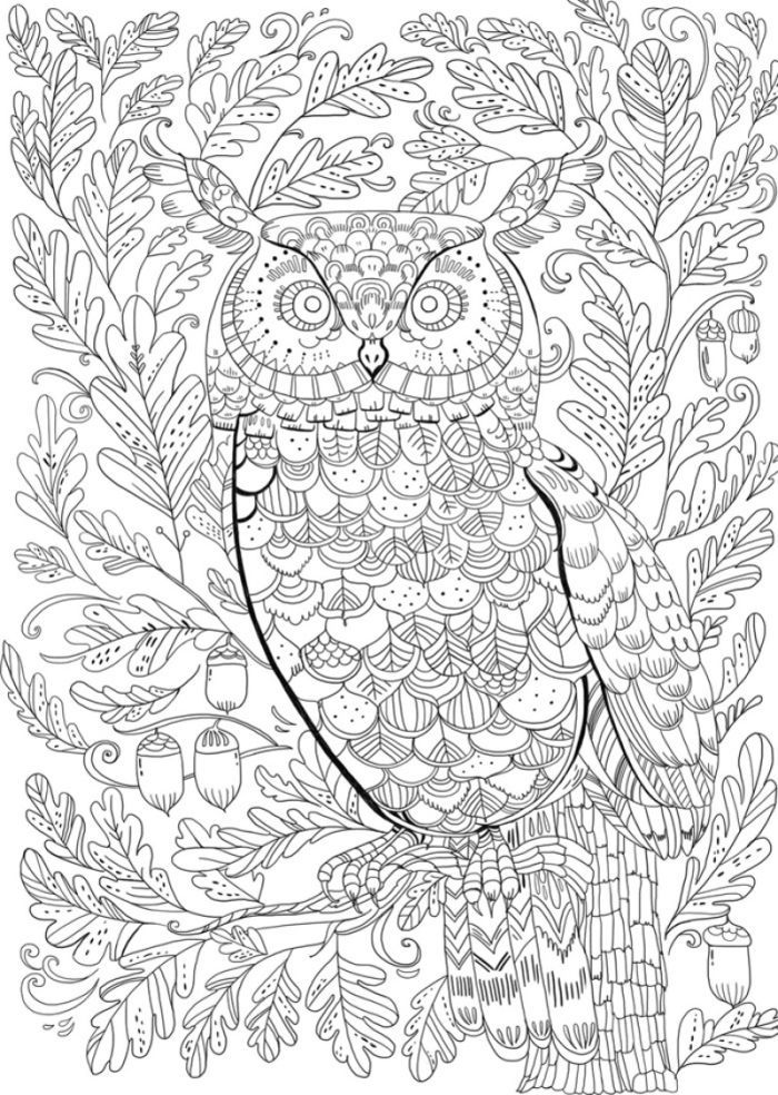blank coloring book pages - photo#33