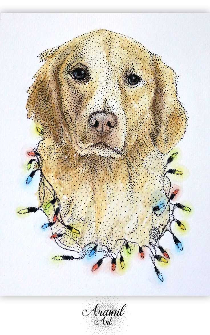Golden retriever with Christmas lights drawing, created by using about a thousand dots and colored with watercolour pencil. Art by Petra Jánosi. Come and check on FB. :) www.facebook.com/aramilart