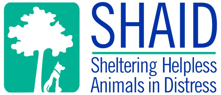 Shaid Animal Shelter | Whynotts Settlement, NS