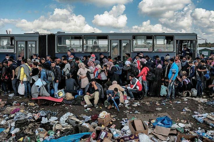 Migranti a Roszke,Ungheria