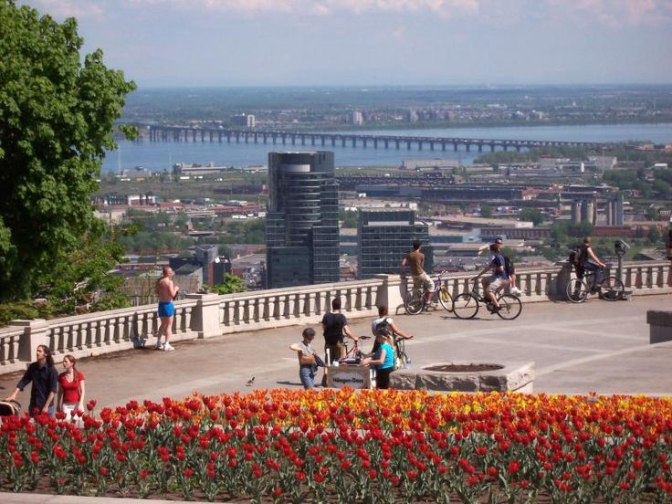 View from Mont Royal  1260 Chemin Remembrance