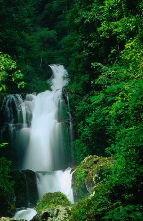 The 8th upper of the Air Terjun Gitgit Waterfalls near Lovina on Bali