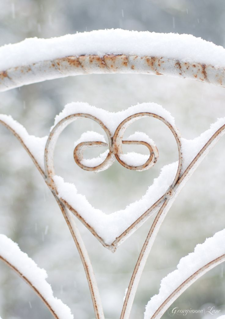 gate with a heartWinter Snow, Valentine Day, Heart Shape, Winter Wonderland, White Christmas, Wrought Iron, Chairs Back, Snow Art, Iron Gates