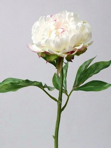 Rose Blanche Artificielle : fleurs artificielles g antes ~ Teatrodelosmanantiales.com Idées de Décoration