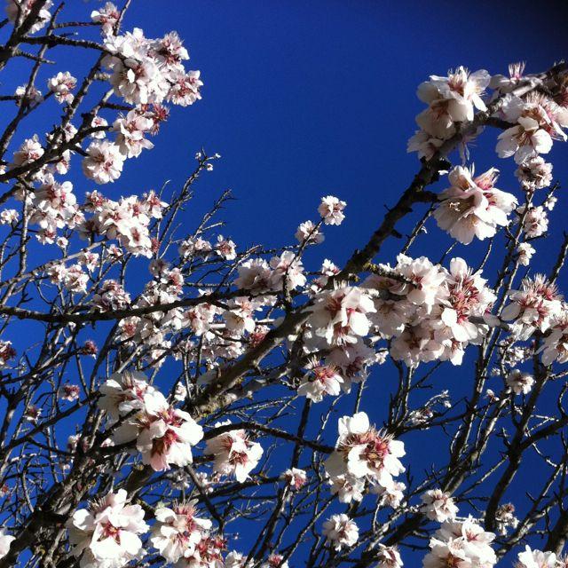 Spring is around the corner!