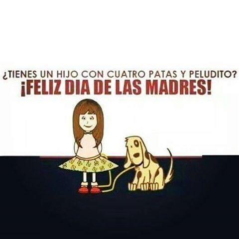 Día de la madre !