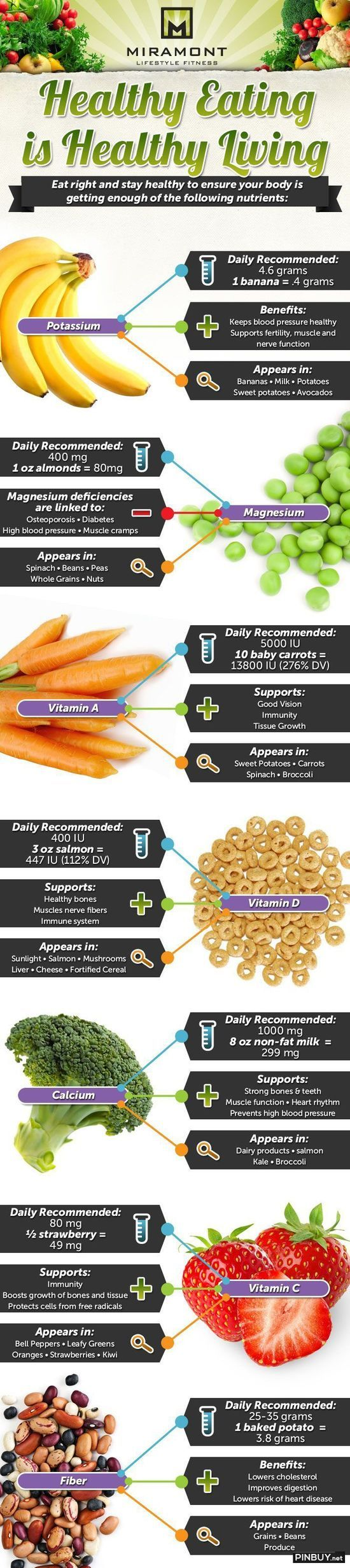 Healthy Eating Infographic - PinBuy